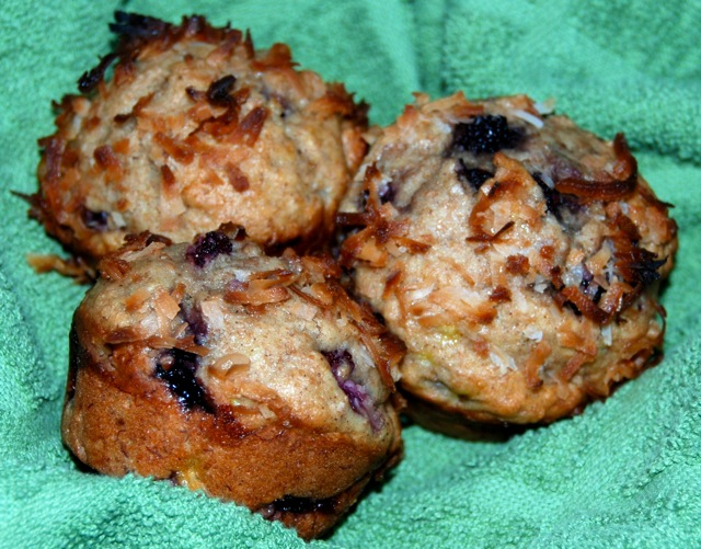 Blackberry Banana Coconut Muffins | Flying on Jess Fuel
