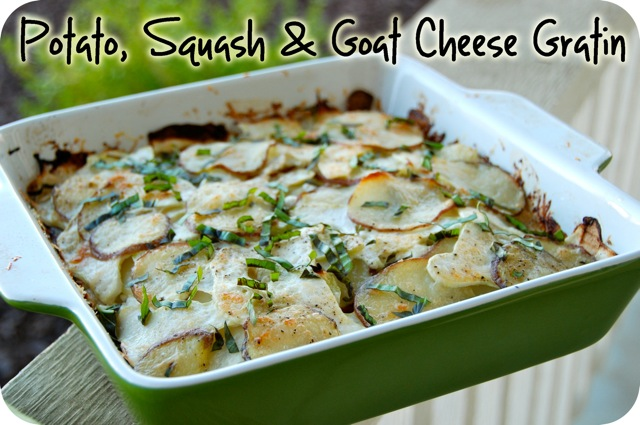 and goat cheese gratin of squash i used here potato squash goat cheese ...